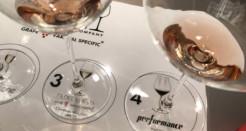 L'importanza del calice giusto per il vino giusto